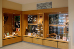 Display cases I by Department of Biology and Department of Visual Arts