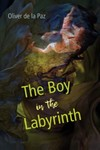 The Boy in the Labyrinth